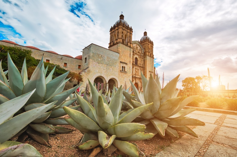 Oaxaca - Jewel of Central Mexico
